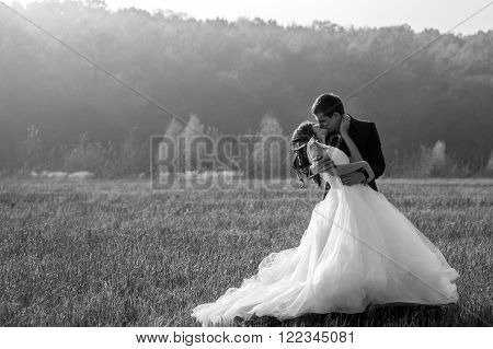 Romantic Fairytale Newlywed Couple Hug & Kiss In Field At Sunset B&w