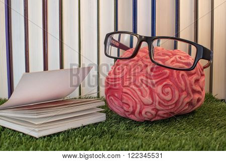 Reading, culture, personal development, brain with book