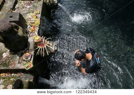 UBUD, BALI - MARCH 14, 2016: A Balinese Hindu devotee washes himself in a ritual performed in the pool in Pura Tirta Empul (temple). Hinduism is the religion of the original Balinese inhabitants.