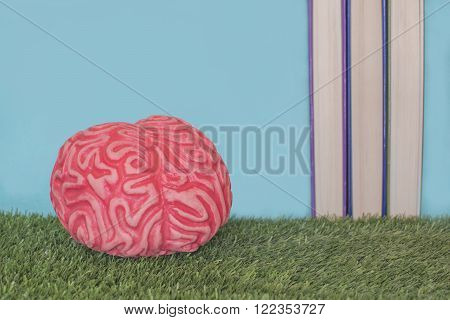 Brain on a grass with book. Culture. Learning
