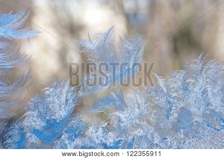 Slightly blurred beautiful frost pattern on a window glass (as an abstract winter background)