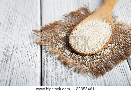 Organic Natural Sesame Seeds