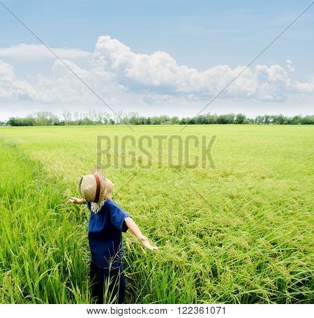 Boy Feel Good On Rice Field
