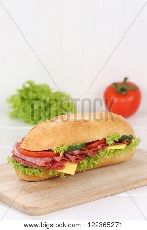 Sub Deli Sandwich Baguette With Salami And Copyspace Copy Space