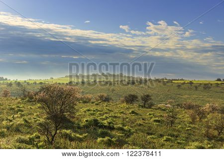 Alta Murgia National Park: hills shrouded in mist in the morning.Apulia-ITALY-Alta Murgia National Park is a limestone plateau,with wide fields and rocky outcrops,grassland characterized by sheep paths,ancient carob tree