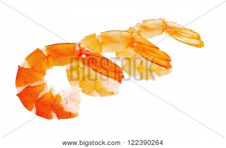 tiger shrimps tail of prawns isolated on a white Seafood