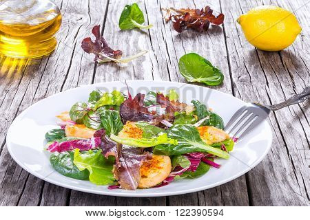 salad with chicken breast and lettuce leaves baby spinach