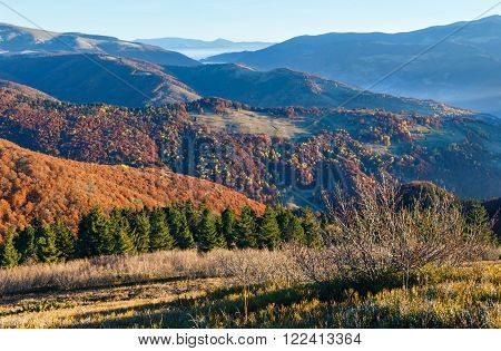 Morning fog in autumn Carpathian. Mountain top daybreak landscape with colorful trees on slope.