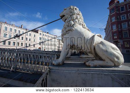 Lion on Lion's bridge in Saint Petersburg, Russia