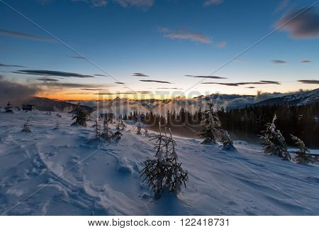 Daybreak winter mountain landscape with clouds and fir trees on slope (Carpathian).