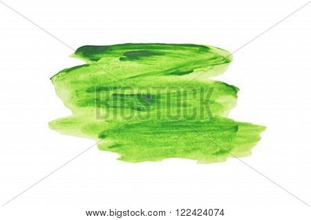 Abstract splash of green watercolor on white background, vector  illustration