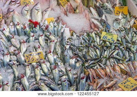 Great choice of fish at a market in Istanbul, Turkey