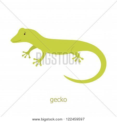 Gecko. Cartoon character. Australian lizard gecko. Zoo illustration. The fauna of the Australian continent. Wild animal. Cute reptile.