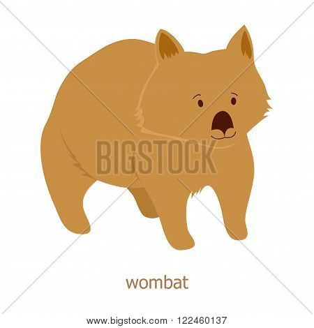 Wombat. Cartoon character. Australian endemic.  Zoo illustration. The fauna of the Australian continent. Wild animal. Cute wombat. Symbol of country.