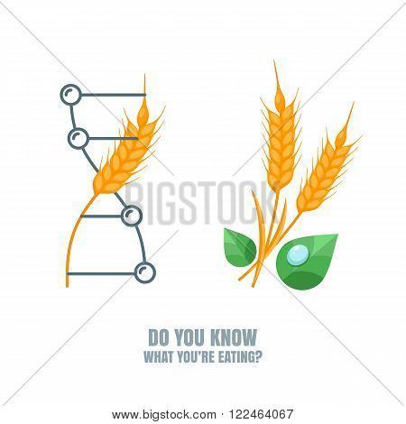 Healthy And Gmo Food Concept.