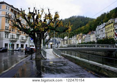 Autumn tree in Karlovy Vary. Stara Louka street of Karlsbad (Karlovy Vary) near Tepla river in the autumn afternoon.