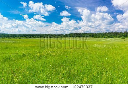 Fresh Landscape Scenic View