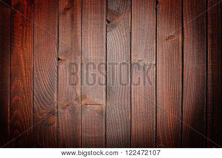 Old bark of tree texture detail cloe-up