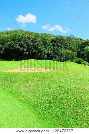 Fairway Landscape Green