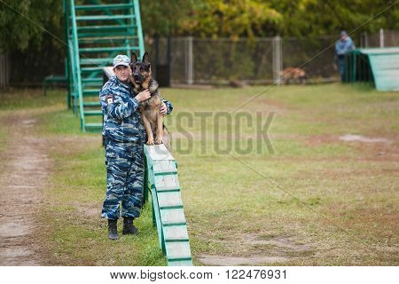 Omsk, Russia - August 22, 2014: Canine Center Training of  german shepherd