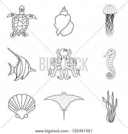 Collection of hand drawn sea creatures in modern mono line style on isolated white background.Vector stingray, jellyfish, fish, sea horse, octopus, shells, seaweed and sea turtle