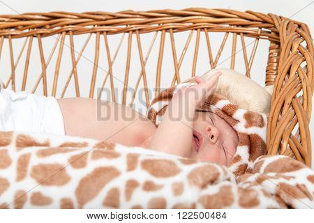 Portrait of Beautiful Boy Lying in Wicker Basket. Adorable Baby Asleep in His Cradle by a Window. Kid Sleeps in Knitted Crib with Tiger Patterns on Blanket. Cute Little Newborn Girl Sleeping in Cradle