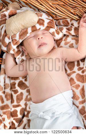 Portrait of Beautiful Boy Lying in Wicker Basket. Adorable Baby Asleep in His Cradle by a Window. Kid Sleeps in Knitted Crib with Tiger Patterns on Blanket. Cute Little Newborn Girl Sleeping in Cradle