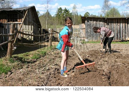 Tver, Russia - May 7 2006: Tanya 11 years old girl rake the ground with hand rakes on a plot of rural land near a wooden house