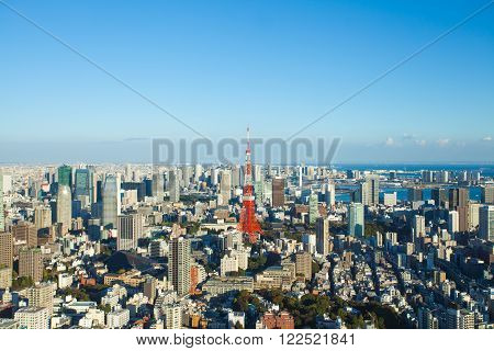 Tokyo city view and Tokyo Tower in evening