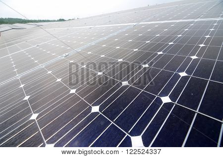 JOHOR, MALAYSIA - MARCH 23, 2016: Solar panel in the solar farm used to collect solar energy and converted it to electrical energy.