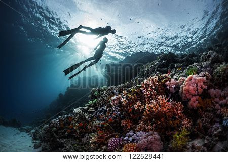 Two freedivers swimming underwater over vivid coral reef. Red Sea, Egypt