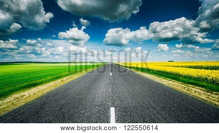 Empty Asphalt Countryside Road Through Fields With Yellow Flowering Canola Rapecolza And Growing Green Wheat In Spring. Sunny Day White Clouds On Blue Sky. Panorama
