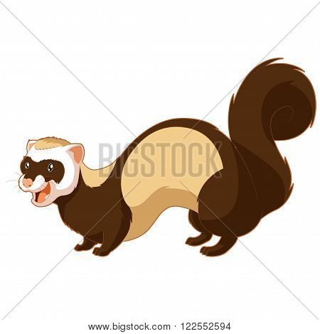 Vector image of the Cartoon smiling ferret