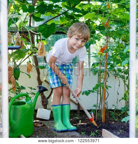 Adorable little kid boy watering plants and vegetables with can and working with garden hoe in greenhouse. Preschool child helping on sunny summer day. Family, garden, gardening, lifestyle