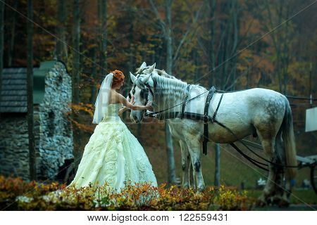Young romantic beautiful bride in white wedding dress as cinderella standing near horses with carriage in deep forest outdoor on natural background horizontal picture