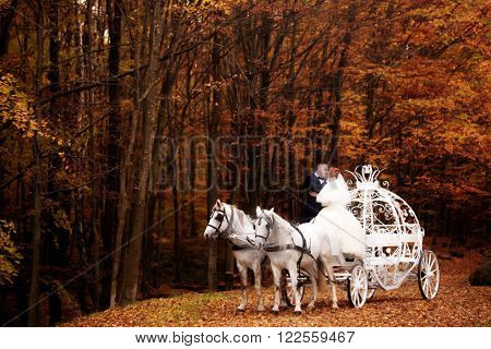 Young wedding romantic couple of bride in white dress and bridegroom in suit in cinderella carriage with horses in autumn deep orange forest outdoor on natural background horizontal picture