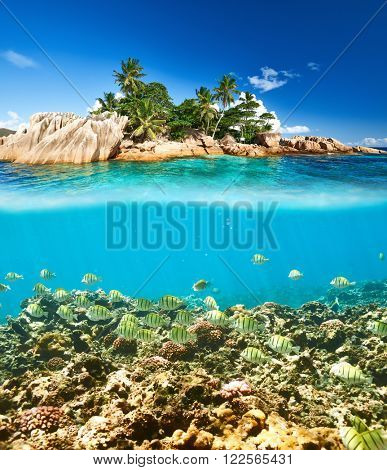 Coral reef and fish at Seychelles split view