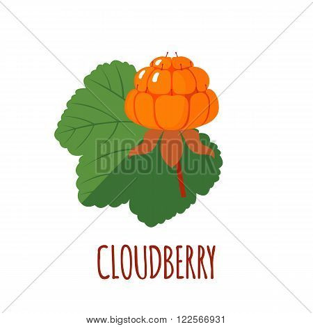 Cloudberry in flat style. Cloudberry vector logo. Cloudberry icon. Isolated object. Natural food. Vector illustration. Cloudberry on white background
