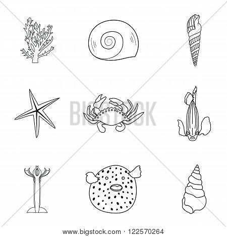 Collection of hand drawn sea creatures in modern mono line style on isolated white background.Vector crab, starfish, fish, squid, coral  and shells