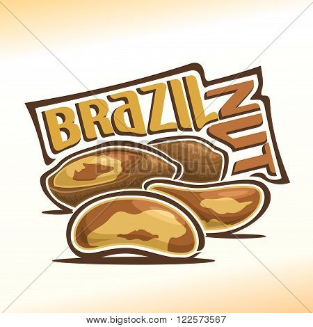 Vector illustration on the theme of the logo for brazil nuts, consisting of peeled brazil nutlets and two nuts in the nutshell