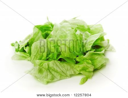 fresh green iceberg salad pieces
