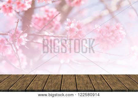 Wild Himalayan Cherry Flower (soft Focus And Color Filter)