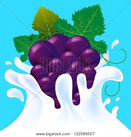 Violet Grapes In Yoghurt