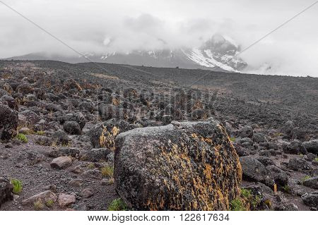 Kilimanjaro top view with snows.  Gray lava f elds, desolate back-country with stones and rocks