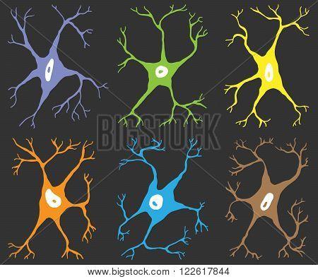 A set of six elements nerve cells multicolor