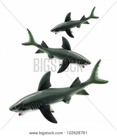 Three Rubber Sharks on Isolated White Background