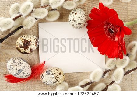 Blank Card Easter Greetings Wooden Plank,eggs,catkins,red Feathers,gerbera