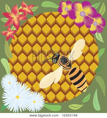 Bee On Honeycombs.