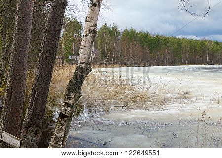Early Spring With Melting Ice And Snow