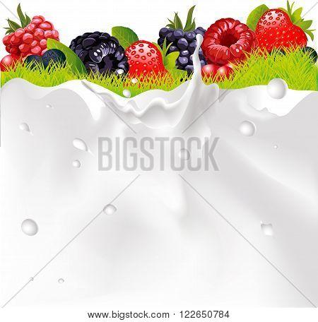 Milk Splash Background Fruit Berries And green Grass vector